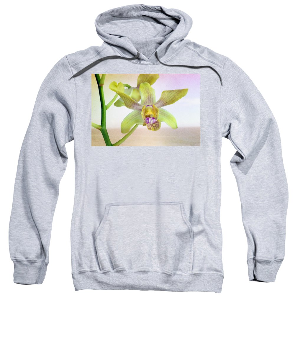 Anniversary Sweatshirt featuring the photograph Yellow-green Orchid by Paul Fell