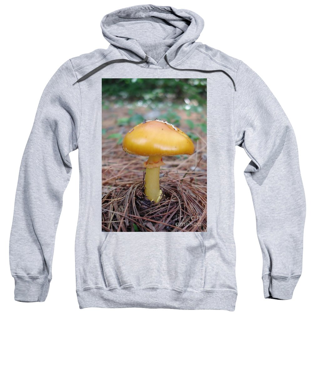 Yellow Sweatshirt featuring the photograph Yellow Mushroom by Kerri Mortenson