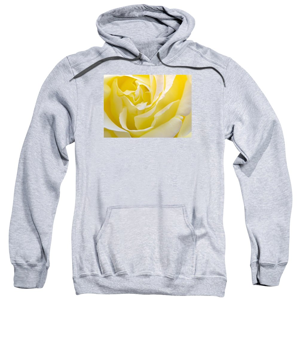 Rose Sweatshirt featuring the photograph Yellow Rose by Svetlana Sewell