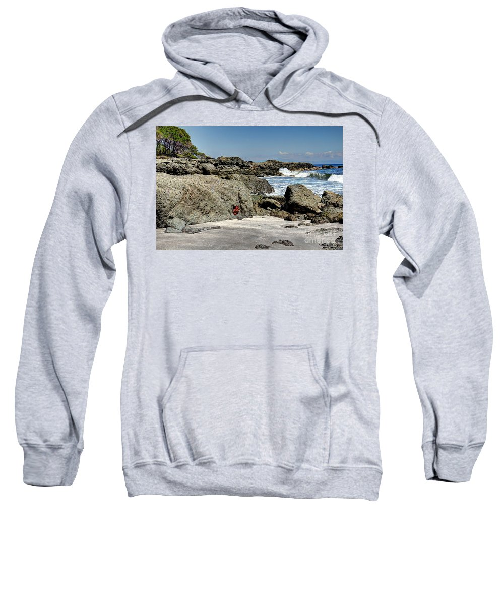 Scenic Sweatshirt featuring the photograph Ylang Ylang by Bob Hislop