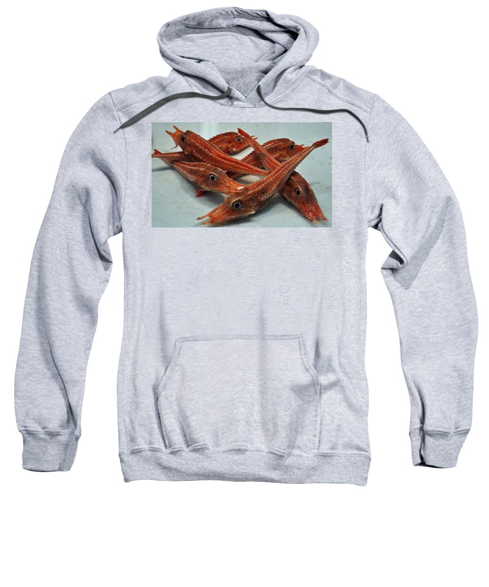 Red Cherry Shrimp Neocaridina Denticulata Sinensis Sweatshirt featuring the photograph Red Cherry Shrimp In The Market by Mary Machare
