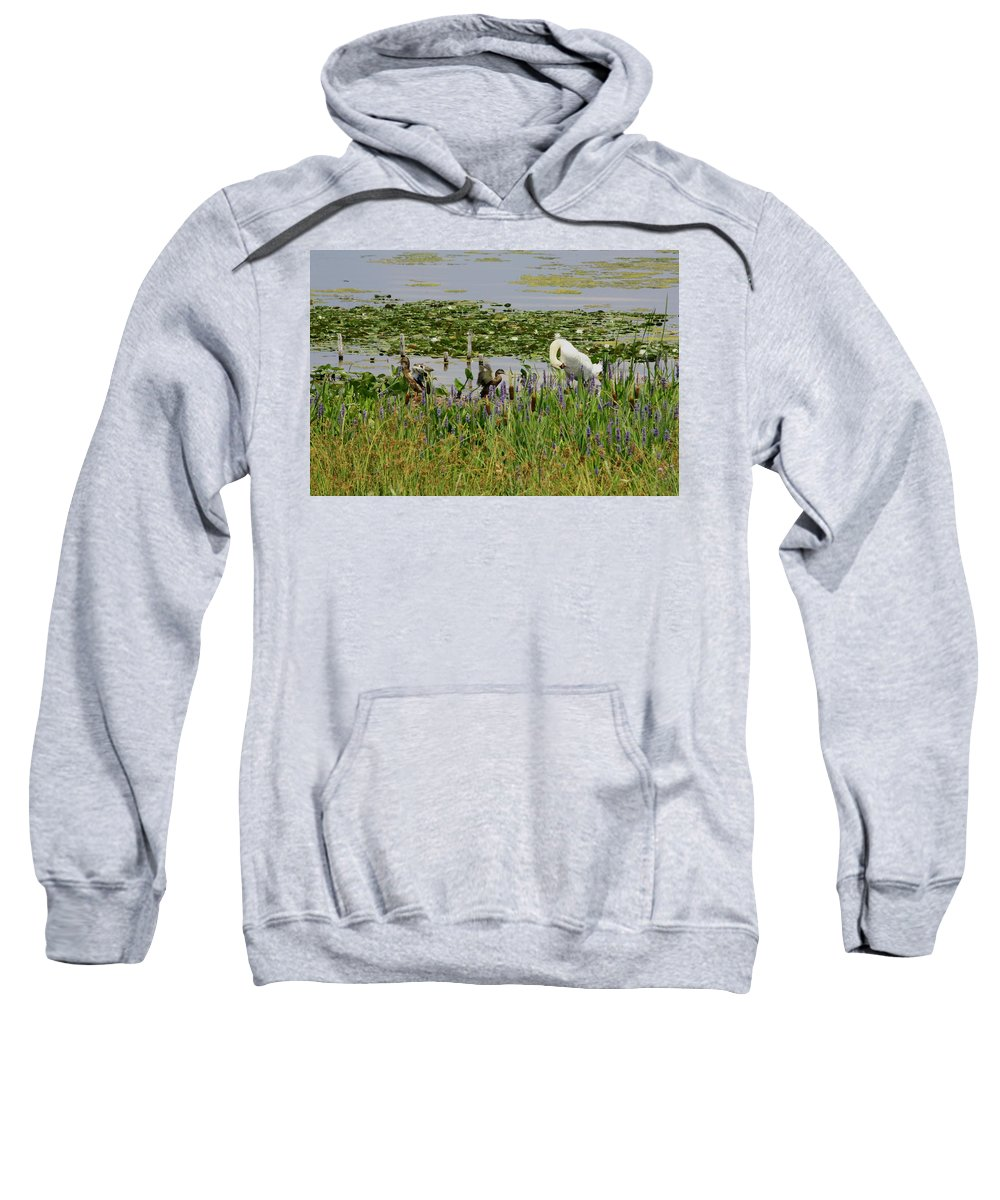 Duck Sweatshirt featuring the photograph Swan And The Duck's by Dennis Pintoski