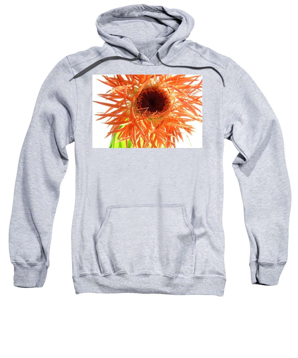 Gerbera Photographs Sweatshirt featuring the photograph 0692c-005 by Kimberlie Gerner