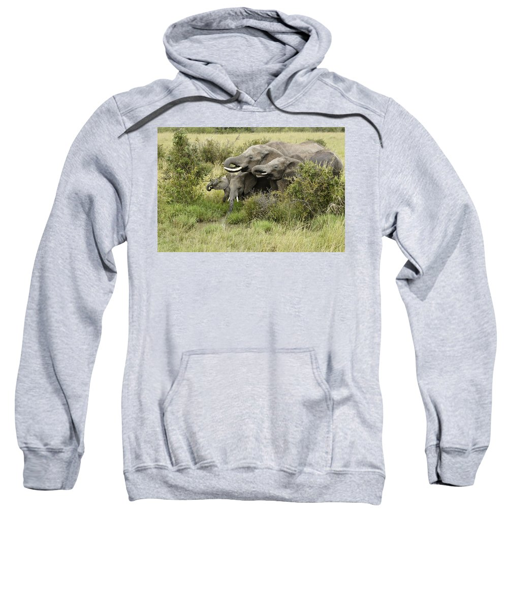 Africa Sweatshirt featuring the photograph At The Waterhole by Michele Burgess