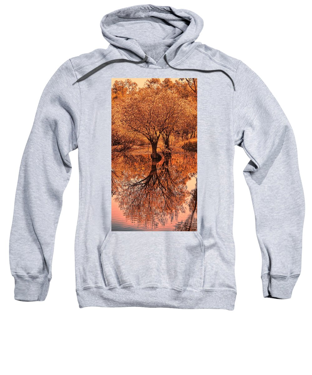 Autumn Sweatshirt featuring the photograph Autumn Reflections by Douglas Barnard