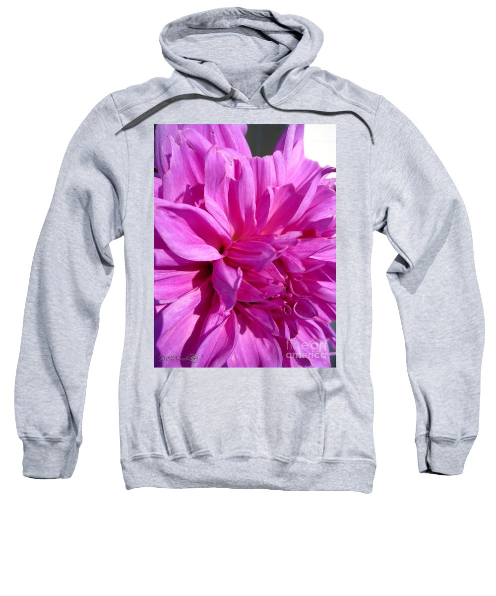 Mccombie Sweatshirt featuring the photograph Dahlia Named Lilac Time by J McCombie