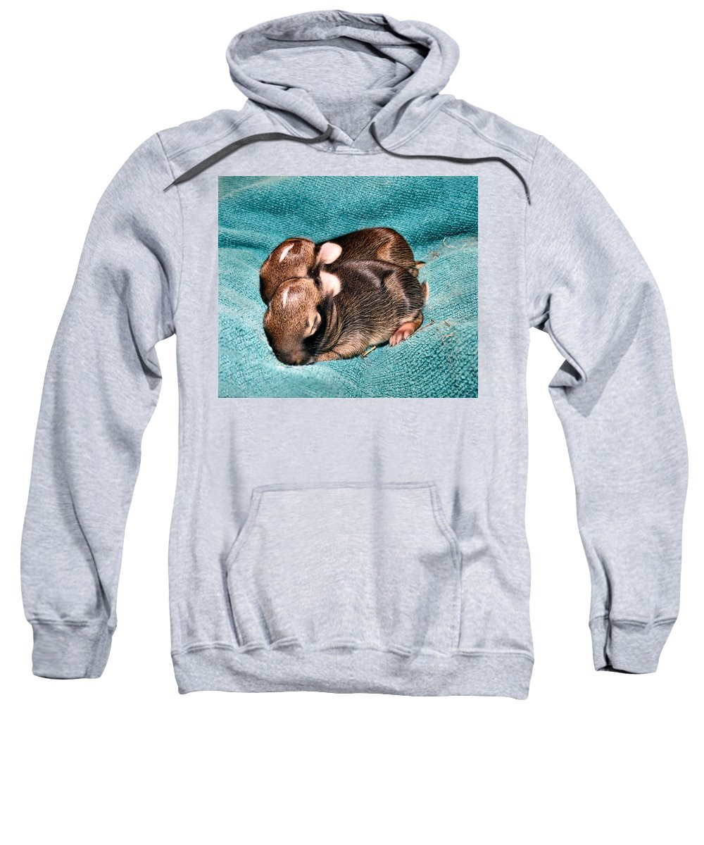 Baby Sweatshirt featuring the photograph Family by Art Dingo
