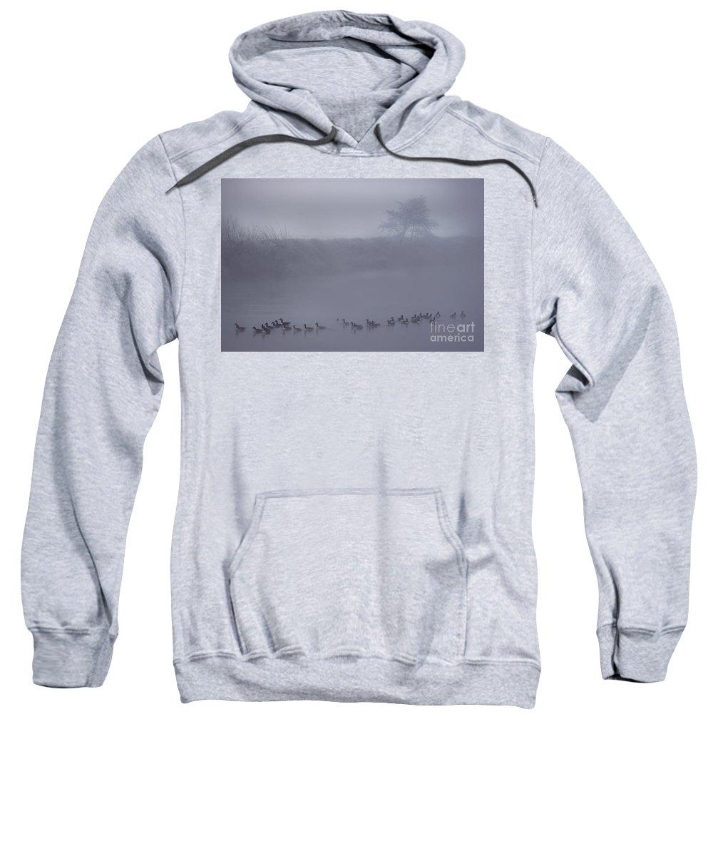 Wye Sweatshirt featuring the photograph Floating In The Fog by Angel Ciesniarska
