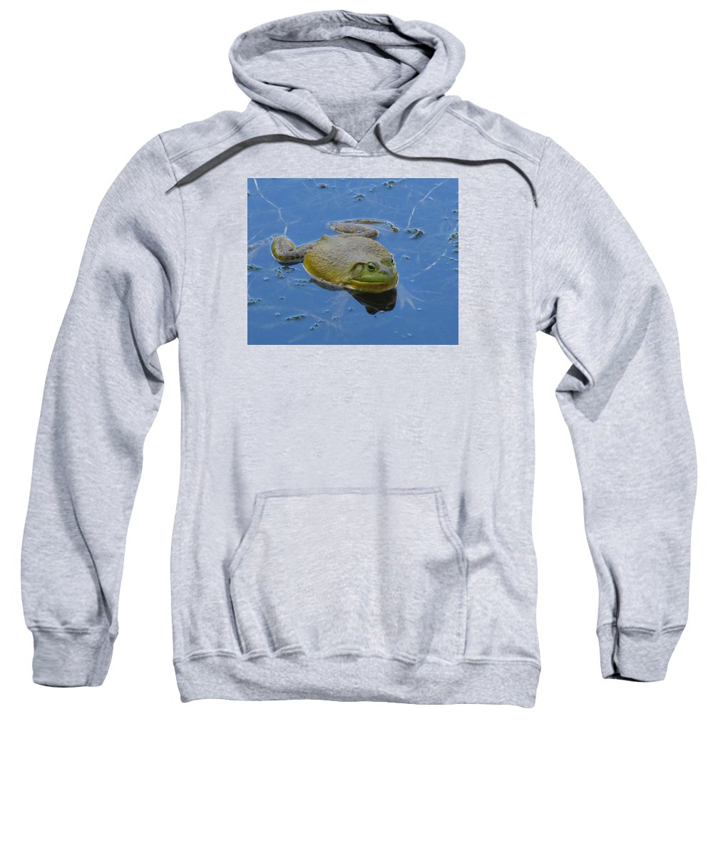 Nature Sweatshirt featuring the photograph Frog In Pond by Jeannie Kohut