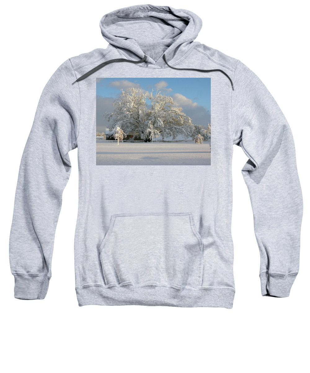Tree Sweatshirt featuring the photograph October Surprise 1872 by Guy Whiteley
