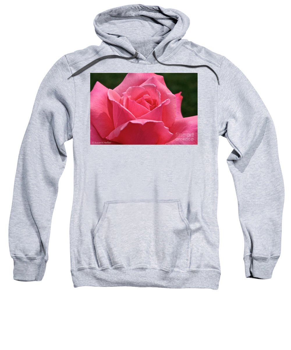 Plant Sweatshirt featuring the photograph Pink Velvet by Susan Herber