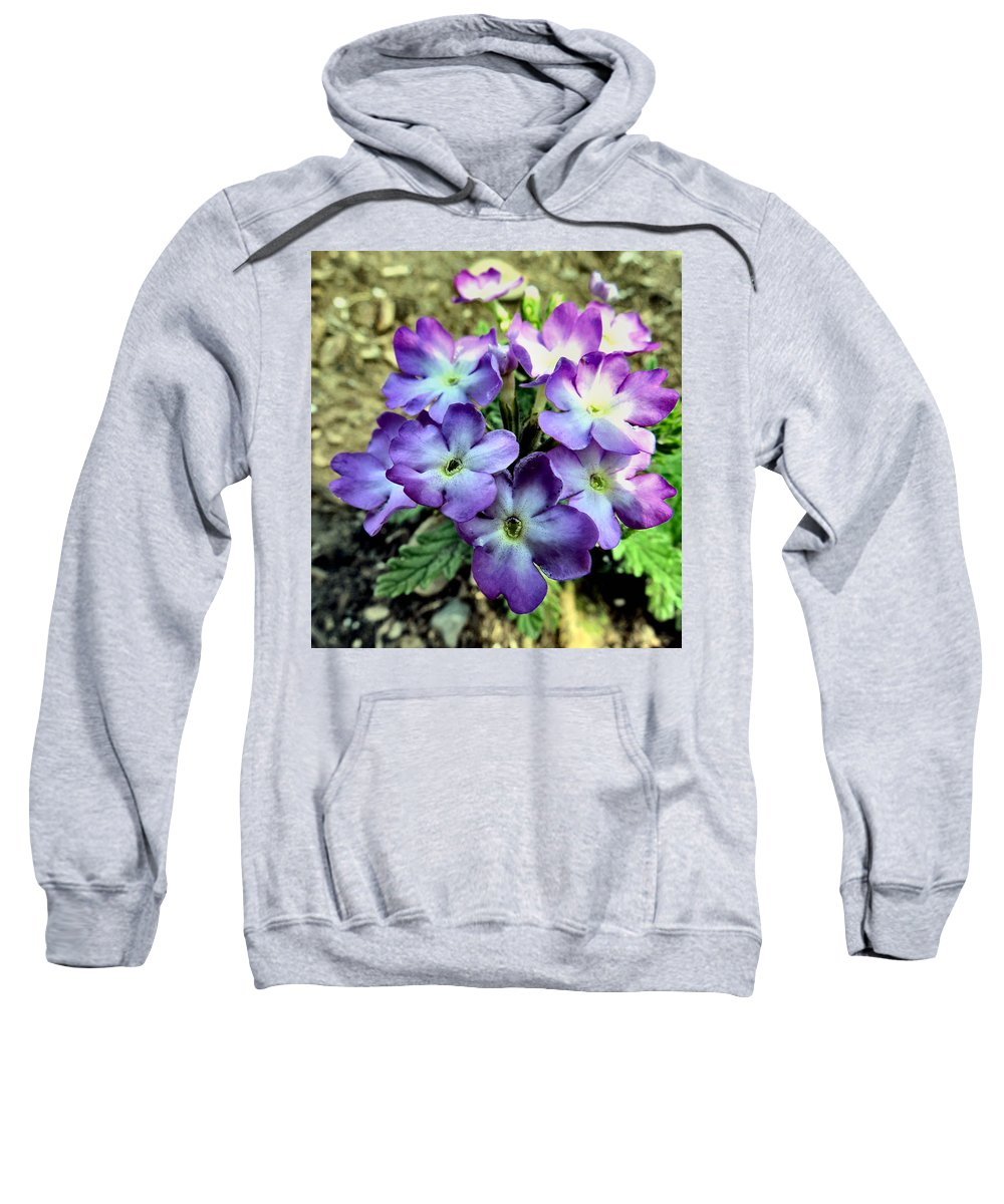 Trailing Sweatshirt featuring the photograph Tiny by Art Dingo