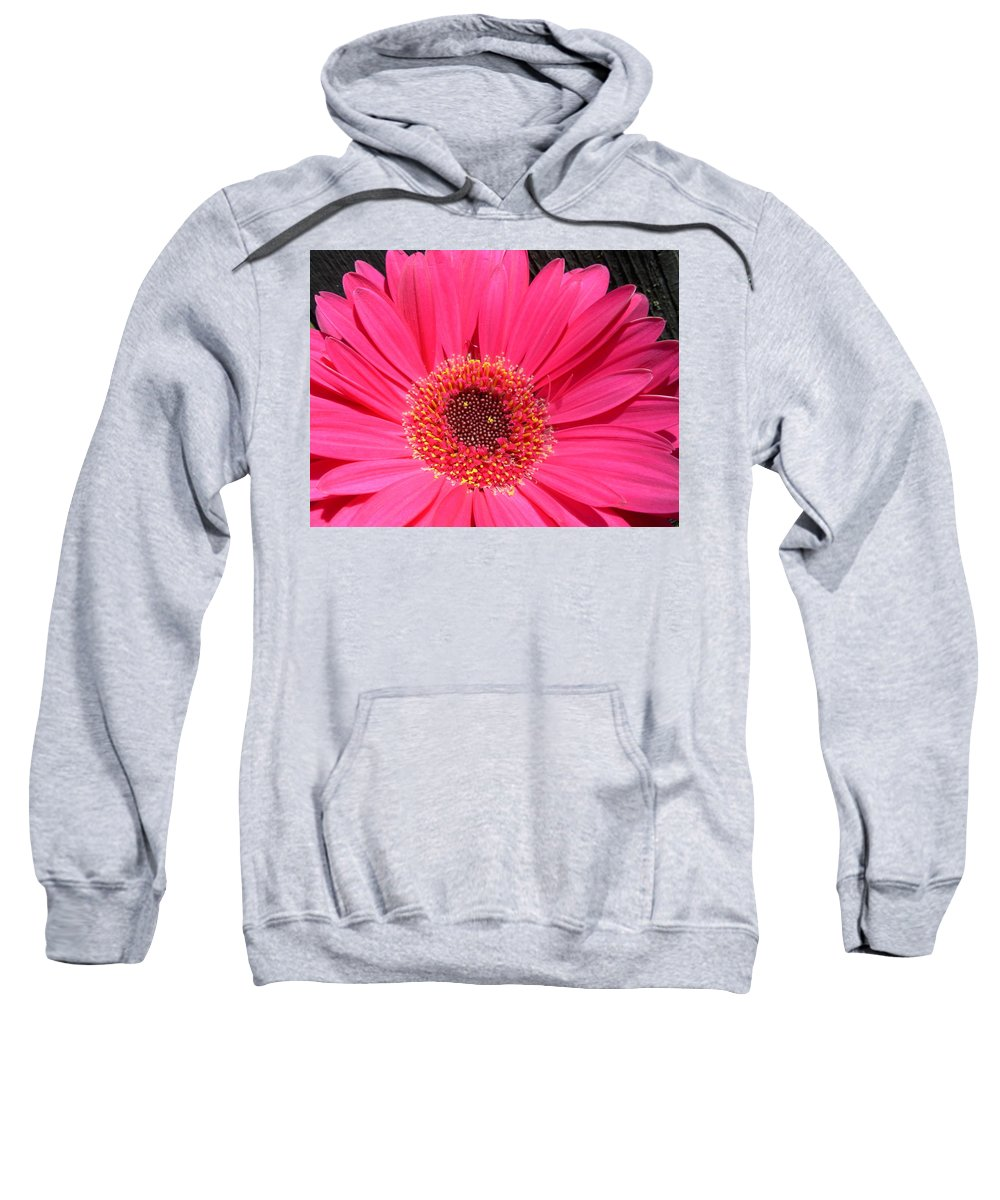 Gerbera Photographs Sweatshirt featuring the photograph 1002 by Kimberlie Gerner