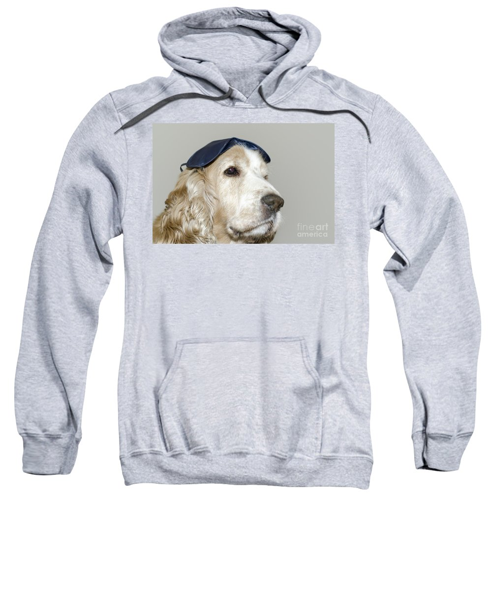 Dog Sweatshirt featuring the photograph Dog With A Sleep Mask by Mats Silvan