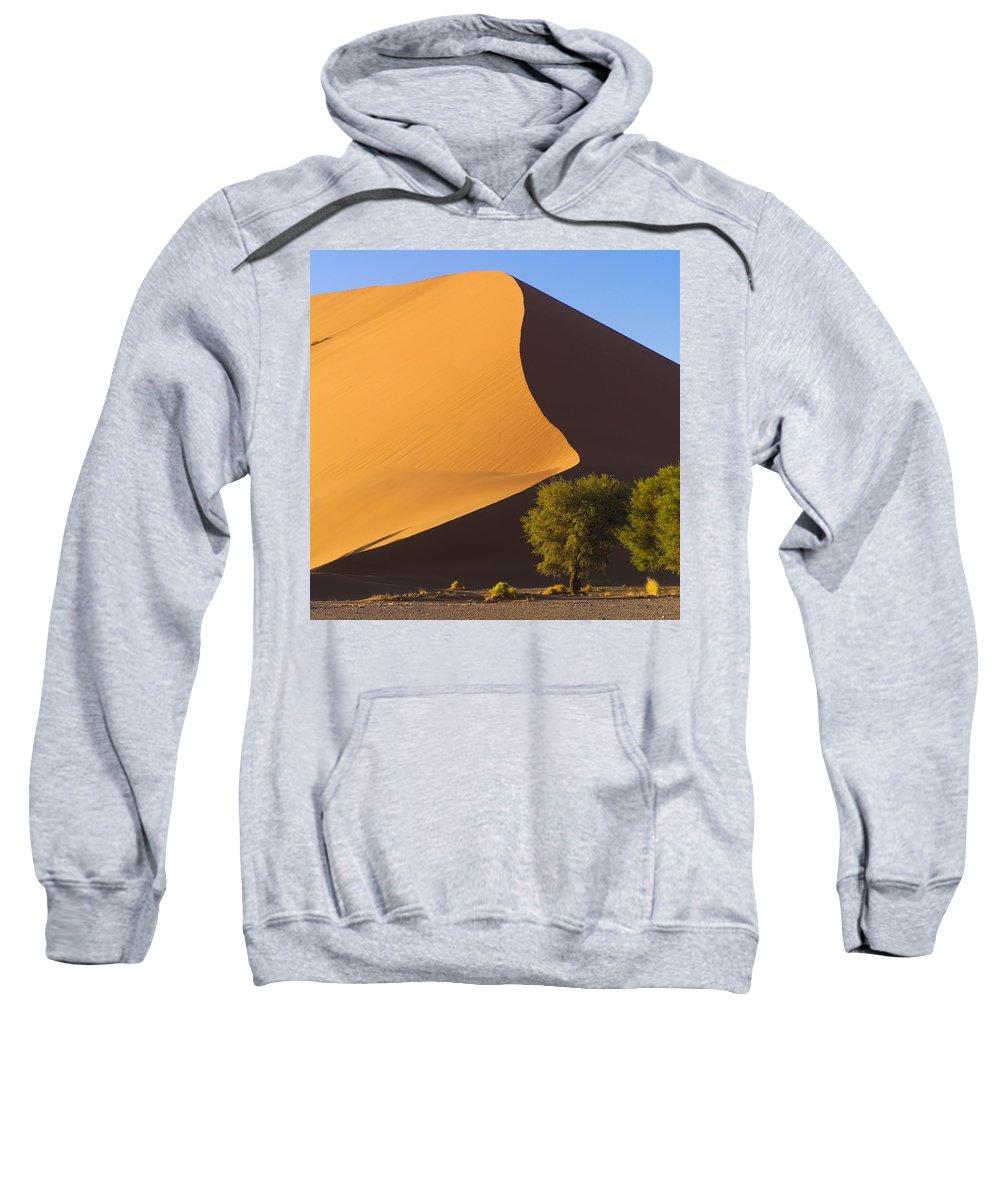 Arid Sweatshirt featuring the photograph Sand Dune, Namibia, Africa by Keith Levit