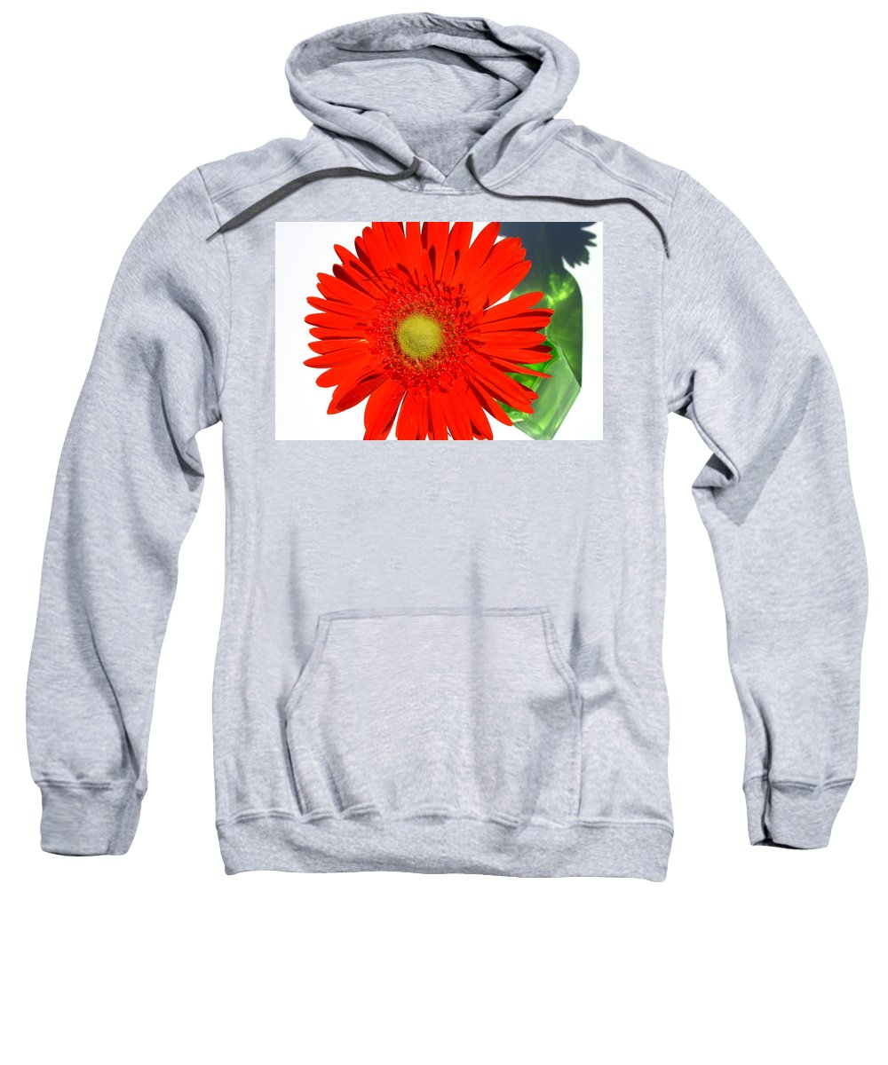 Gerbera Photographs Sweatshirt featuring the photograph 2003a1-1 by Kimberlie Gerner