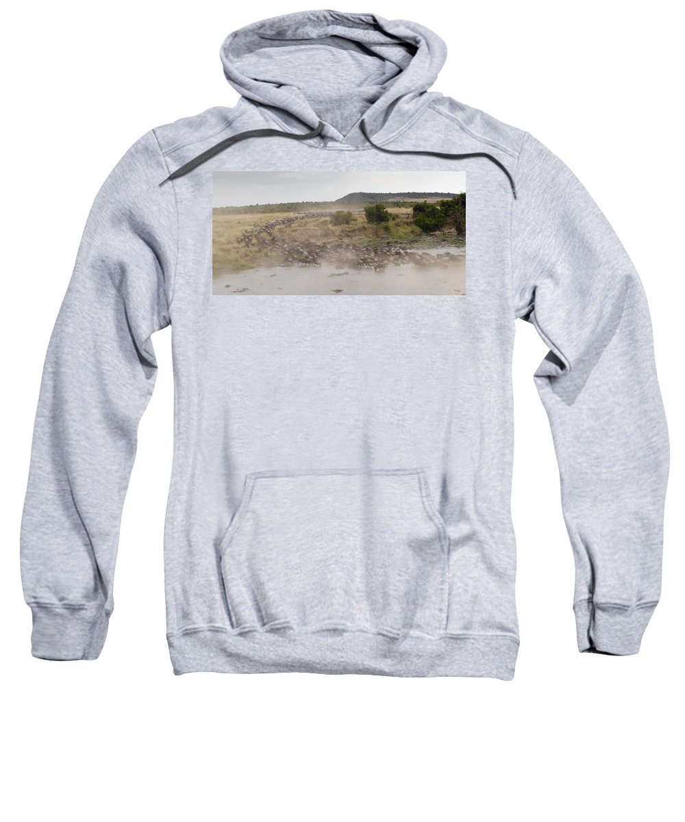 Body Of Water Sweatshirt featuring the photograph Wildebeest, Kenya, Africa by Keith Levit