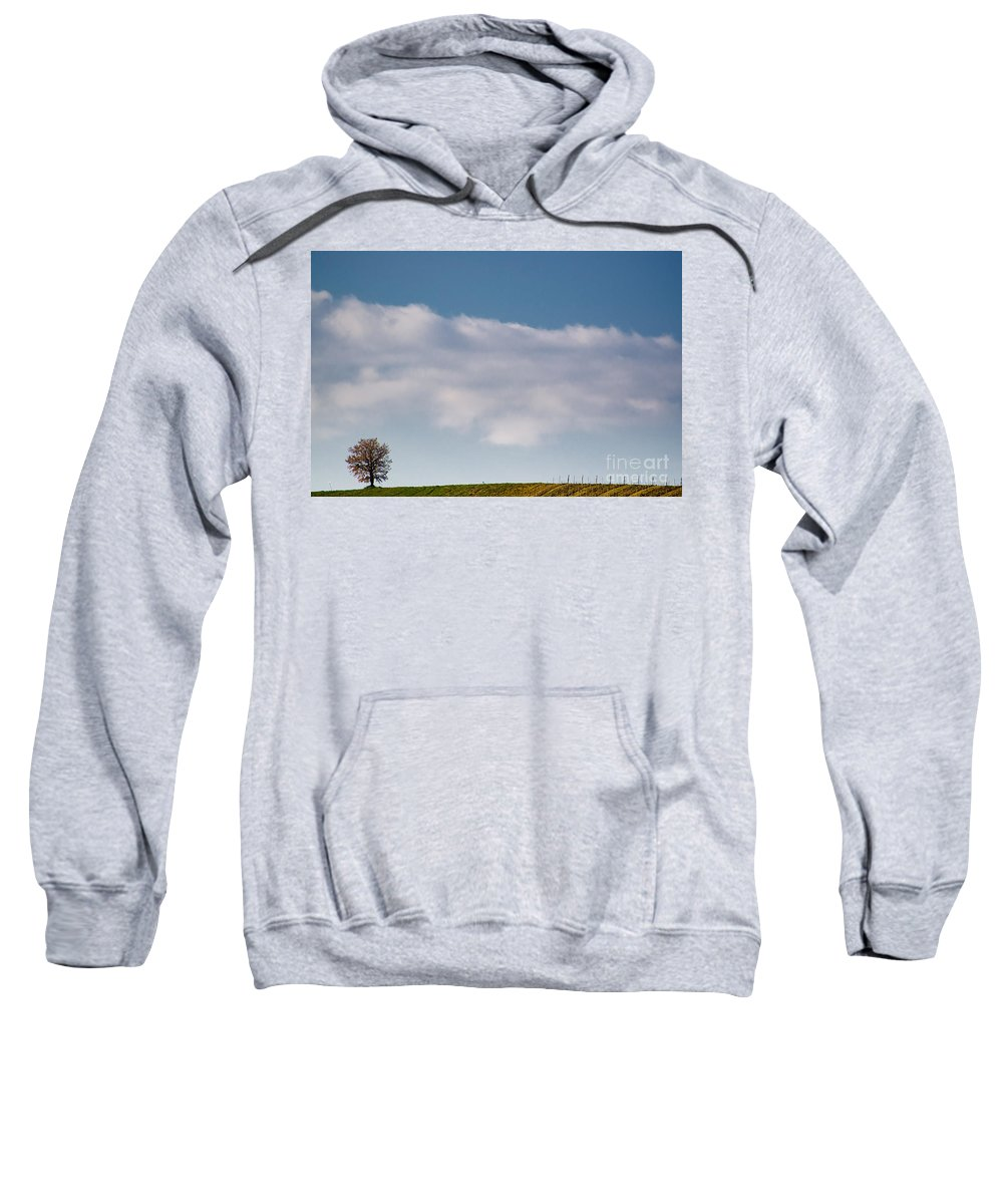 Tree Sweatshirt featuring the photograph Lonely Tree by Mats Silvan
