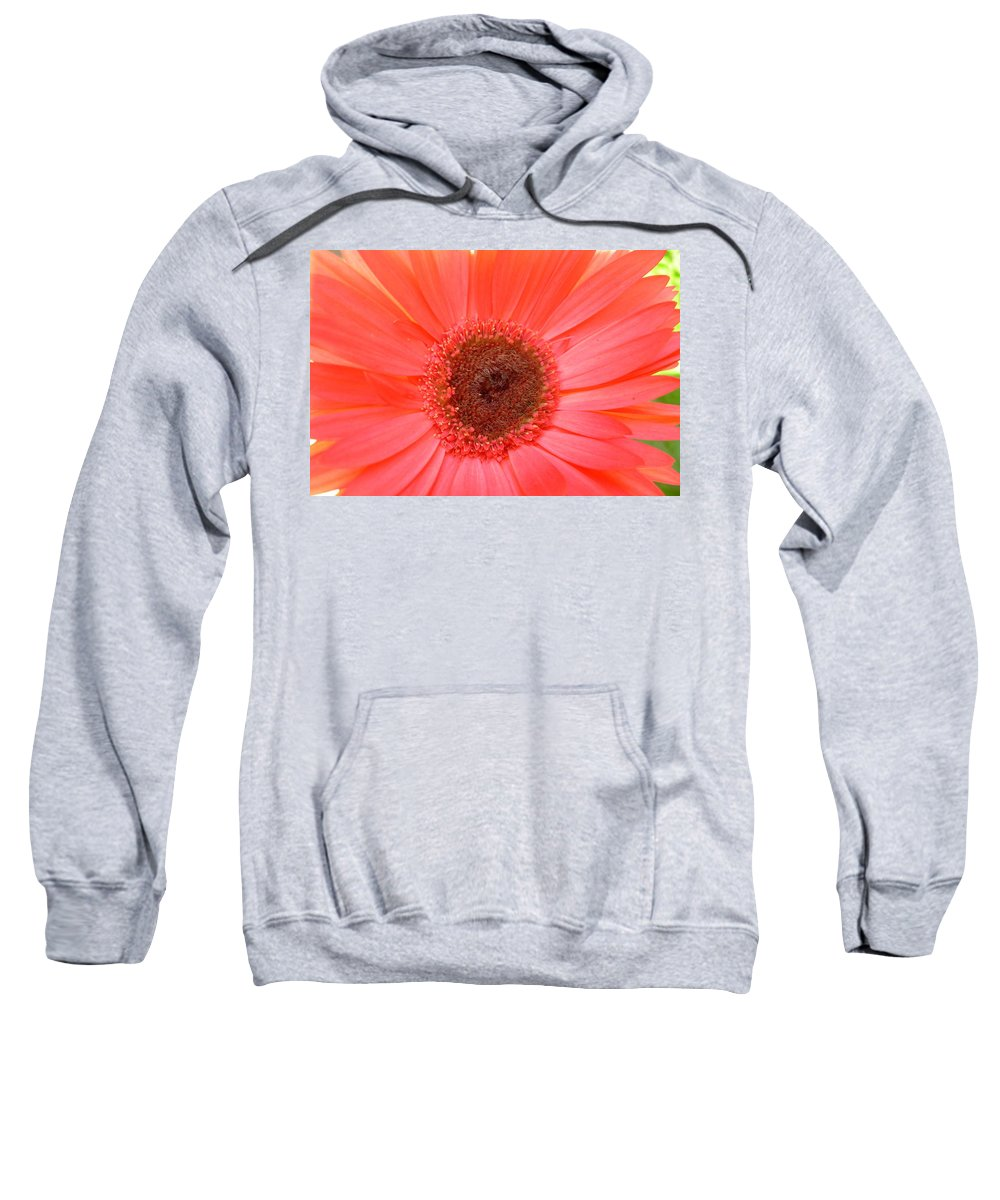 Gerbera Photographs Sweatshirt featuring the photograph 5324-001 by Kimberlie Gerner