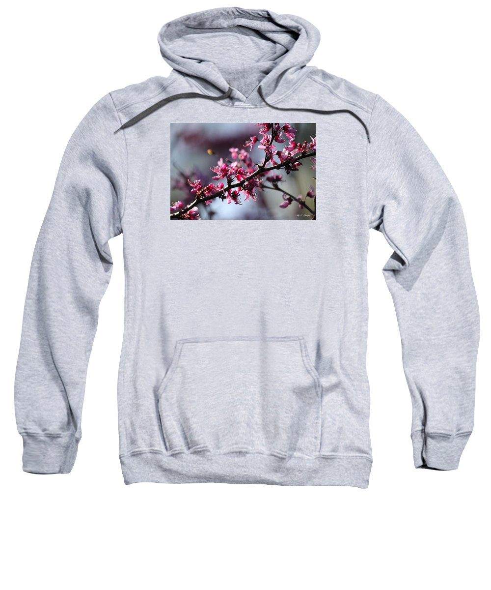Flowers Sweatshirt featuring the photograph A Hint Of Spring by Amy Gallagher