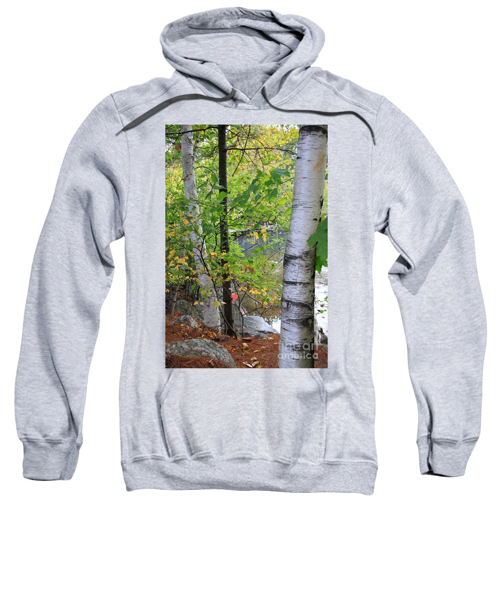Fall In New Hampshire Sweatshirt featuring the photograph A Little Bit Of Color by Michael Mooney