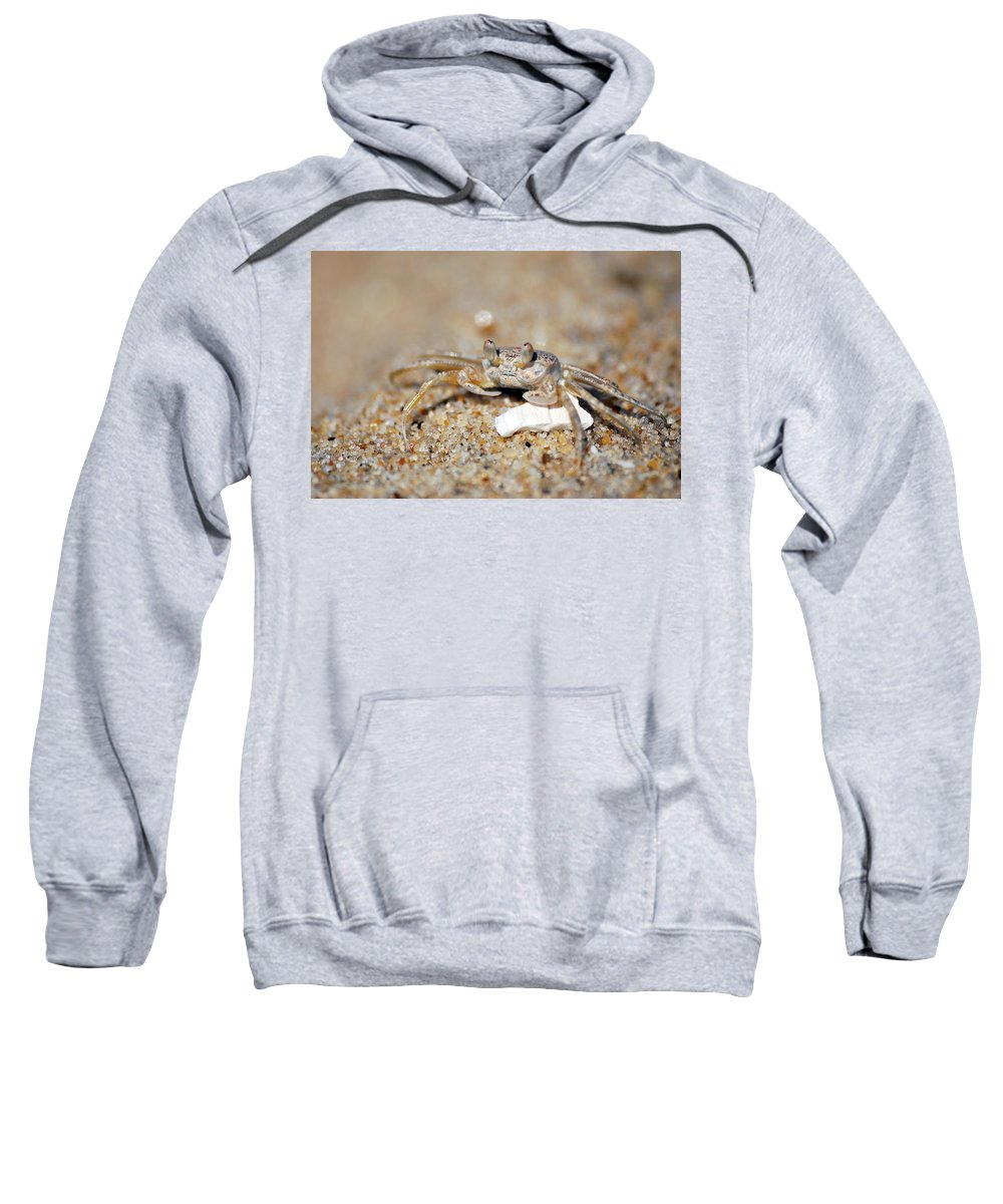 Sand Crab Sweatshirt featuring the photograph A Little Crabby by Lori Tambakis