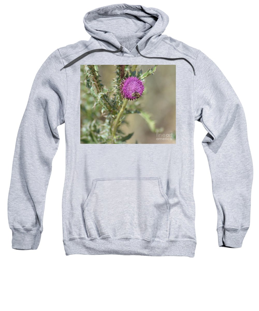 Bees Sweatshirt featuring the photograph A Love Affair by Donna Greene