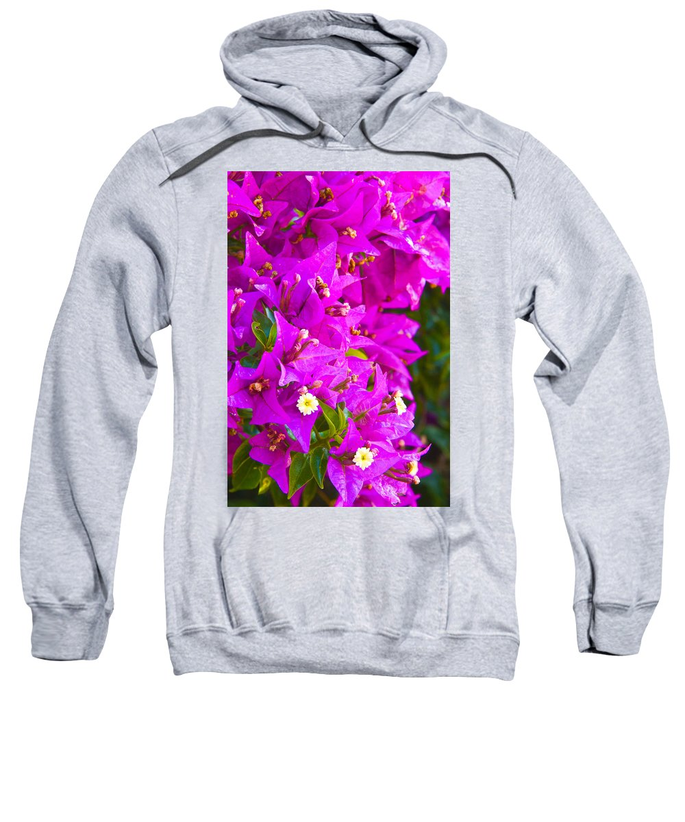 Barcelona Sweatshirt featuring the photograph A Wall Of Flowers by Richard Henne