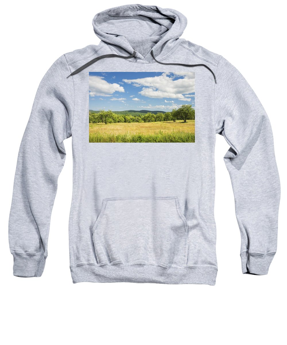 Agriculture Sweatshirt featuring the photograph Apple Trees And Hay Field In Summer Maine by Keith Webber Jr