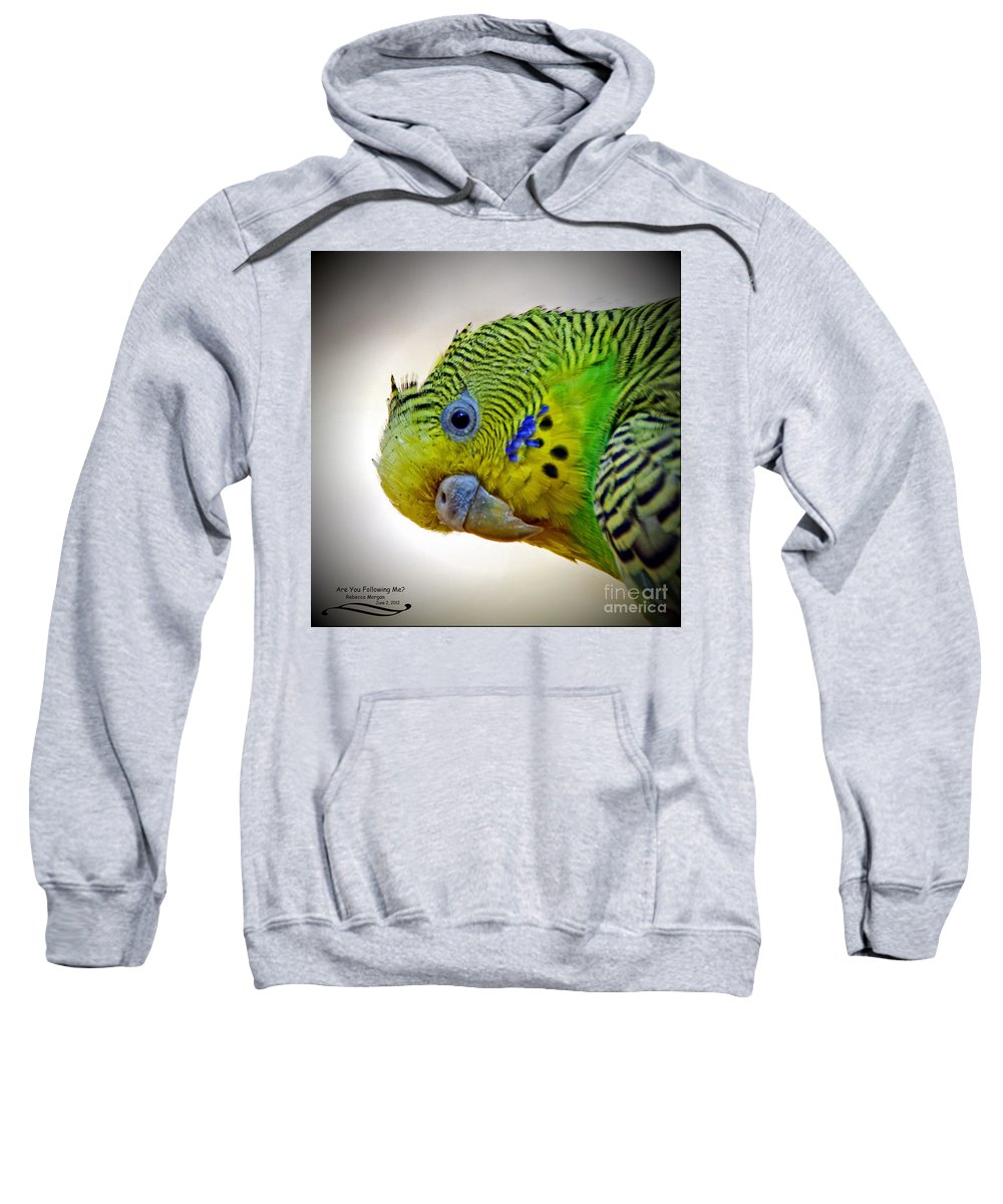 Parakeet Sweatshirt featuring the photograph Are You Following Me by Rebecca Morgan