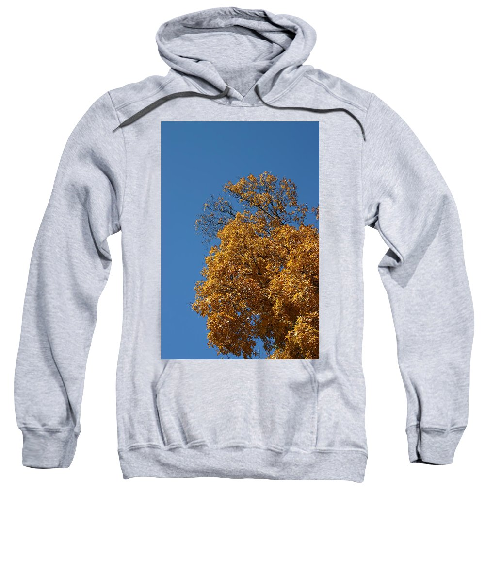Nature Sweatshirt featuring the photograph Autumn Leaves In Tn by Leann DeBord