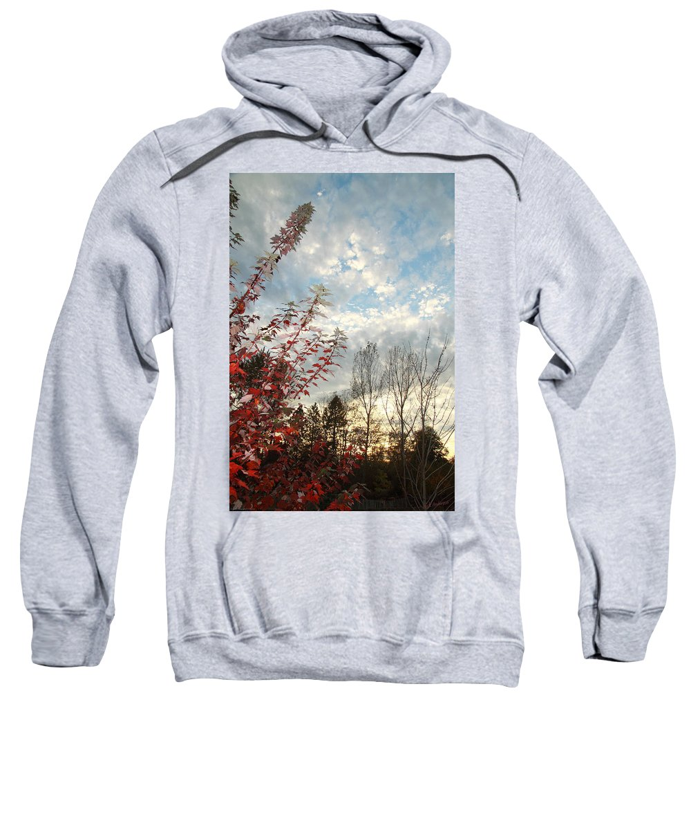 Autumn Sweatshirt featuring the photograph Autumn Maple And Sky by Mick Anderson