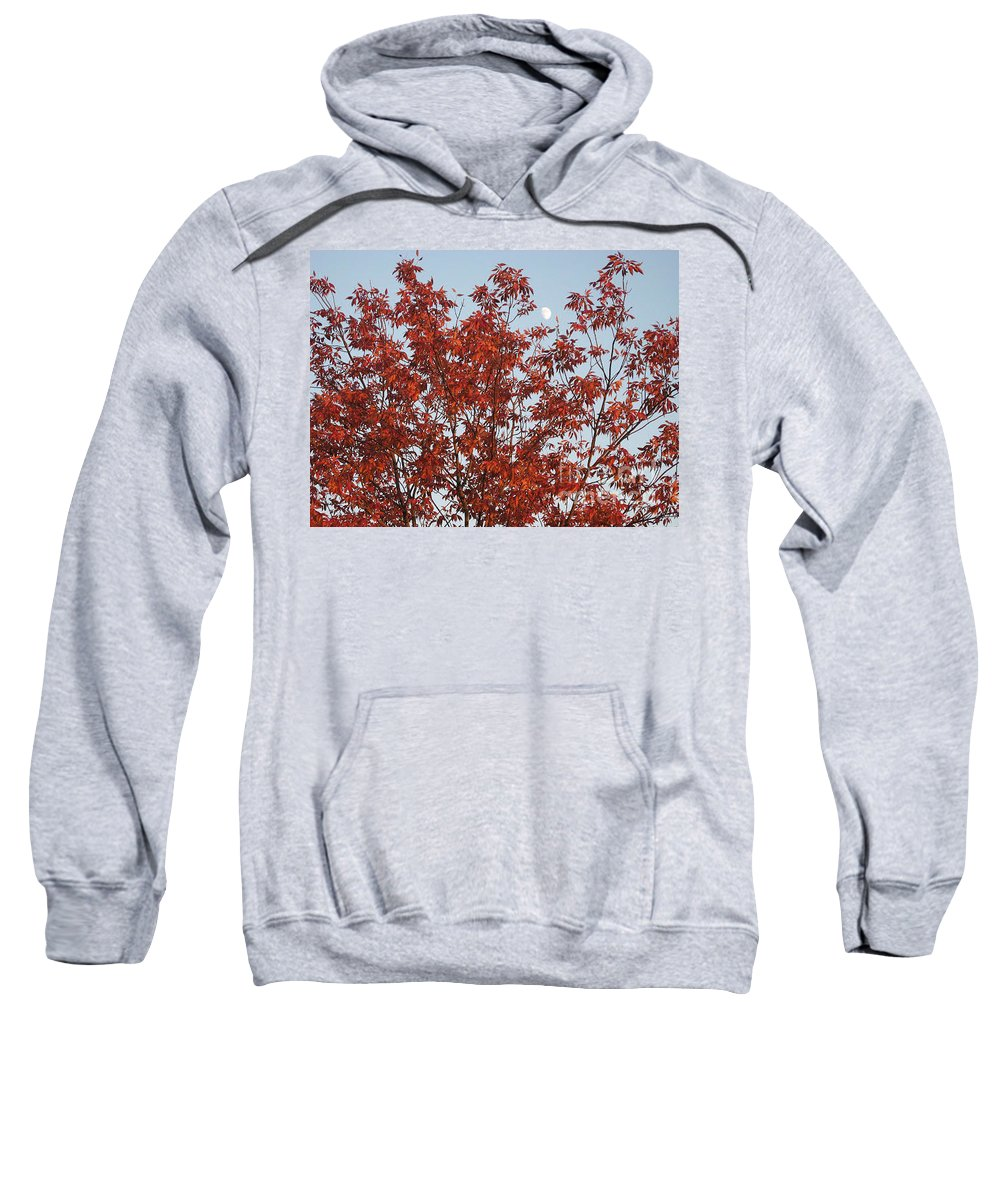 Red Brown Leaves Sweatshirt featuring the photograph Autumn Moon by Sonali Gangane