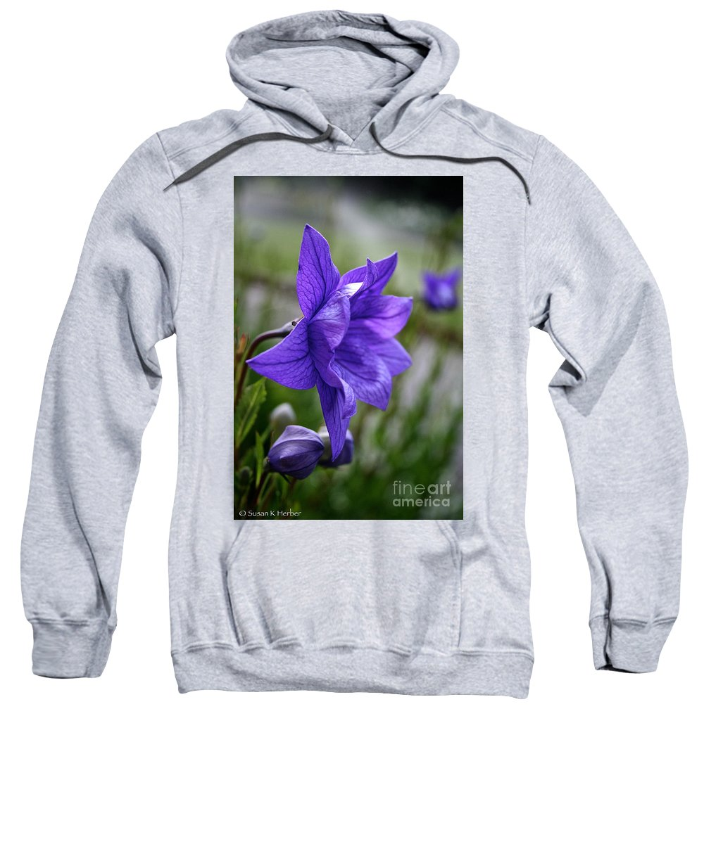 Floral Sweatshirt featuring the photograph Balloon Flower Profile by Susan Herber