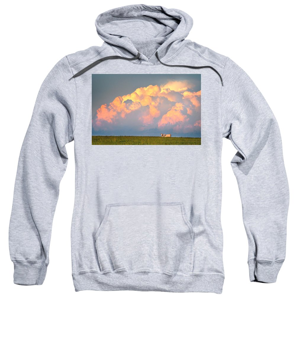 Cows Sweatshirt featuring the photograph Beefy Thunder by Brian Duram