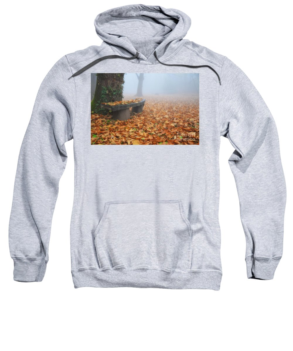 Bench Sweatshirt featuring the photograph Bench In The Fog by Mats Silvan