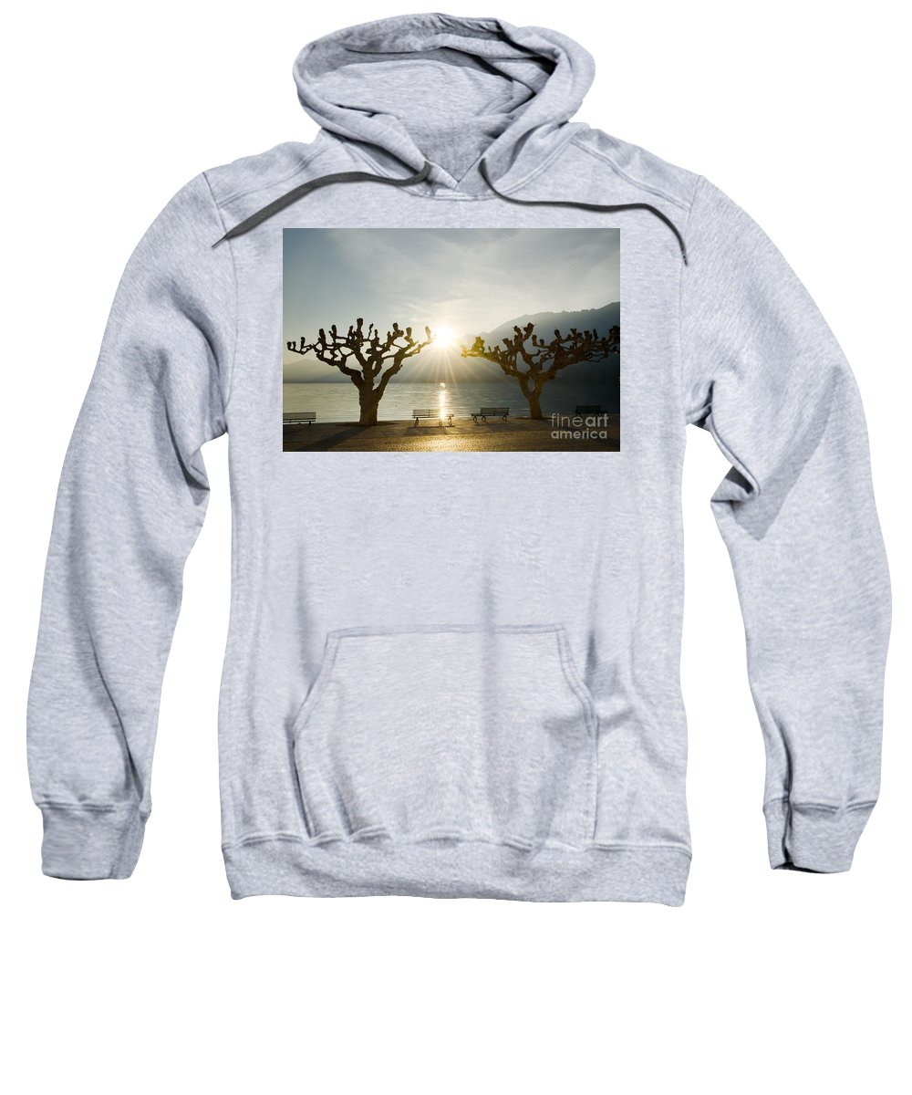 Benches Sweatshirt featuring the photograph Benches And Trees On The Lakefront by Mats Silvan