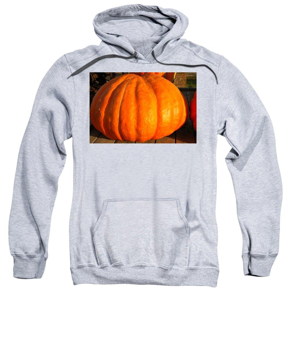 Food And Beverage Sweatshirt featuring the photograph Big Orange Pumpkin by LeeAnn McLaneGoetz McLaneGoetzStudioLLCcom