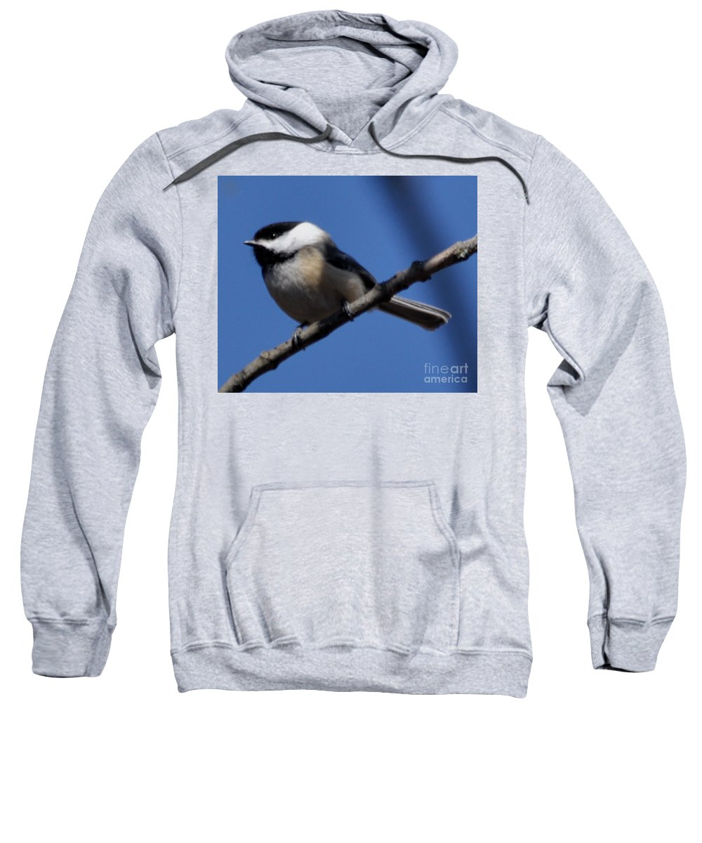 Bird Sweatshirt featuring the photograph Black-capped Chickadee by Ronald Grogan