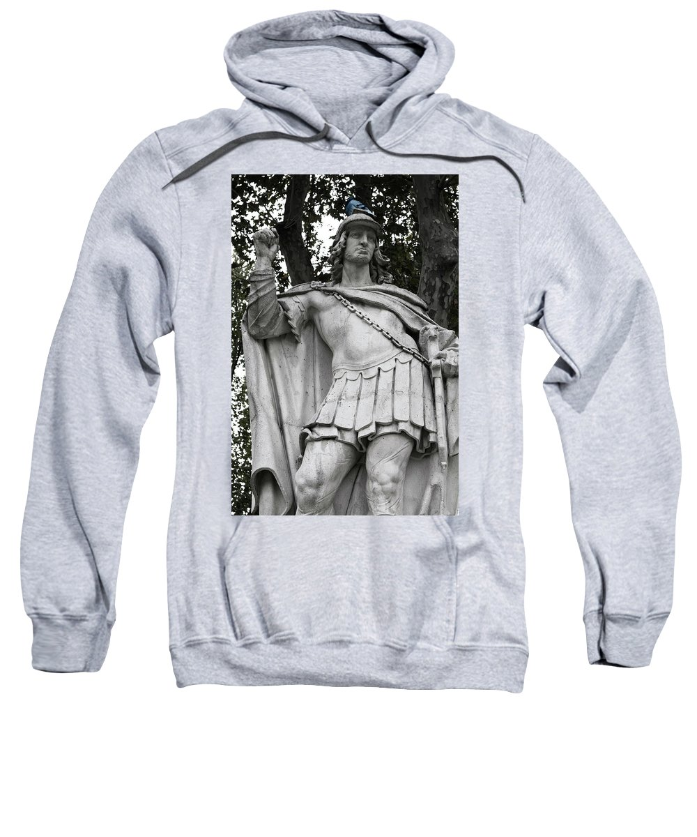 Madrid Sweatshirt featuring the photograph Blue Bird Atop by Lorraine Devon Wilke