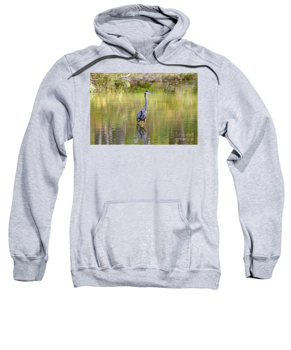 Birds Sweatshirt featuring the photograph Blue Heron by Jack Schultz