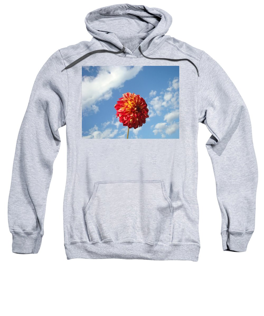 Flowers Sweatshirt featuring the photograph Blue Sky White Clouds Floral Art Prints Dahlia Flowers by Baslee Troutman