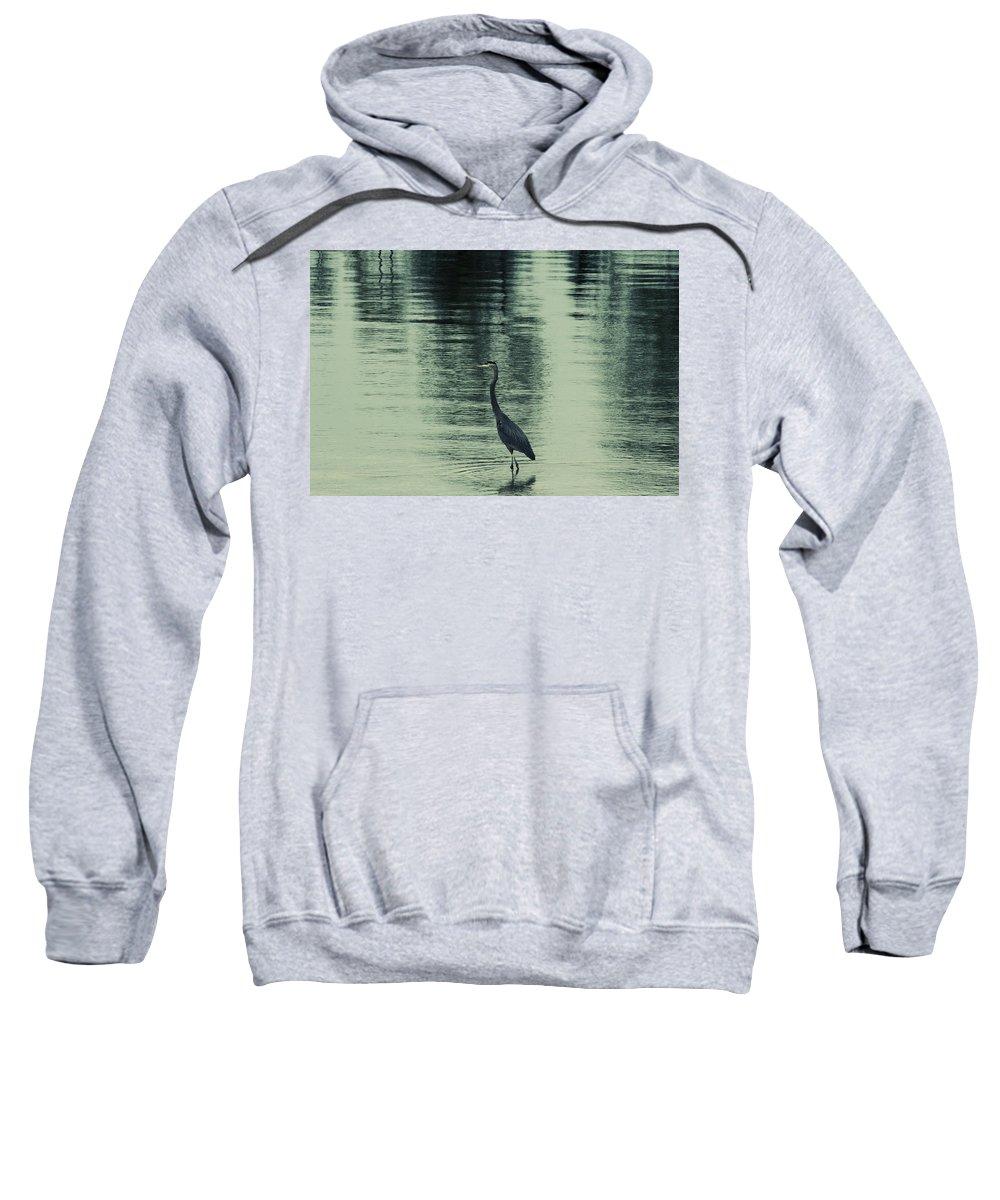 Blue Heron Sweatshirt featuring the photograph Bluegreen Lake by Douglas Barnard