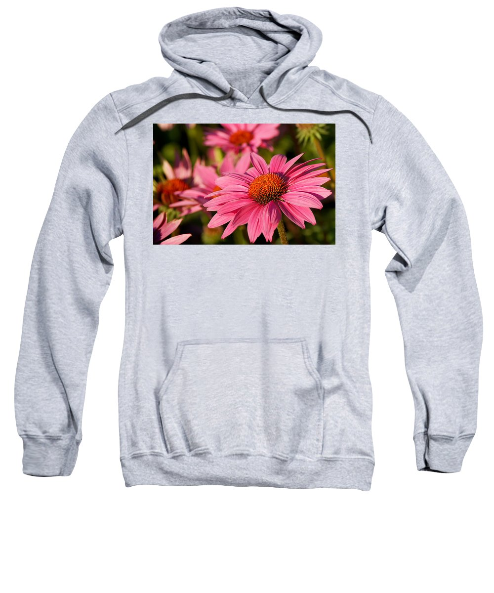 Flower Sweatshirt featuring the photograph Bold And Beautiful by Bill Pevlor