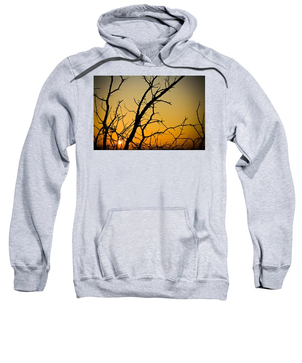 Chicago Sweatshirt featuring the photograph Branches Reaching The Sunset by Anthony Doudt