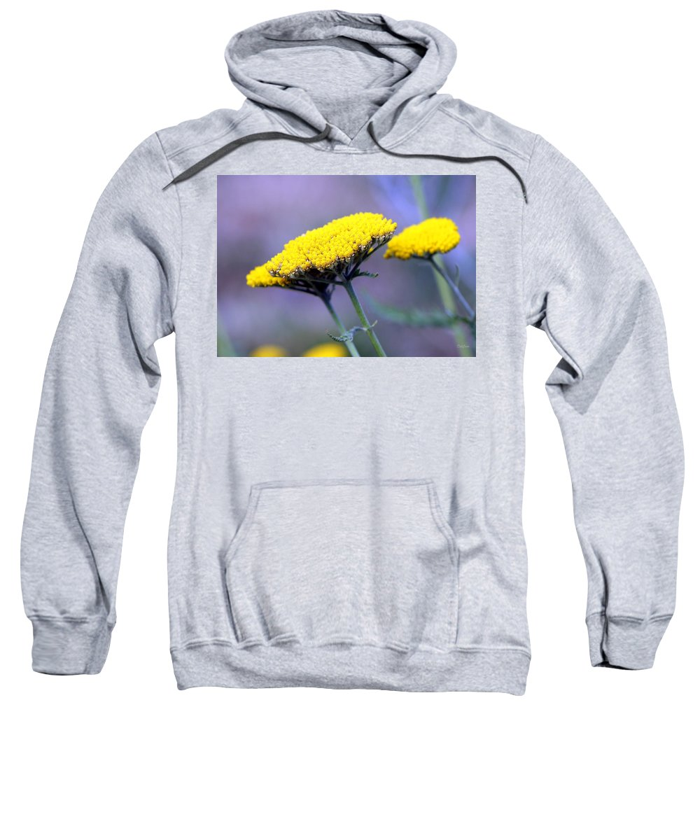 Flowers Sweatshirt featuring the photograph Butter Weeds by Deborah Crew-Johnson
