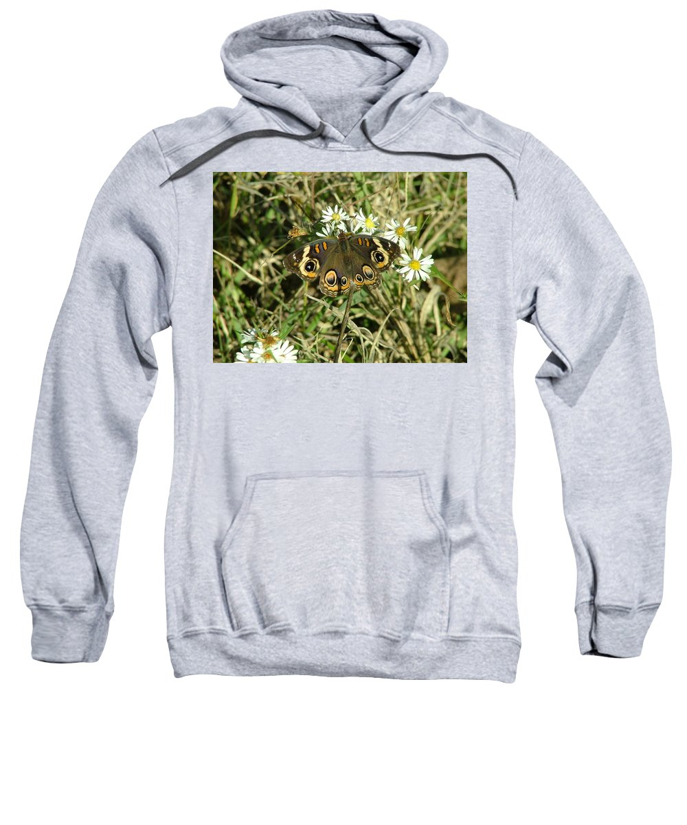Landscape Sweatshirt featuring the photograph Butterfly And Flowers by Dennis Pintoski