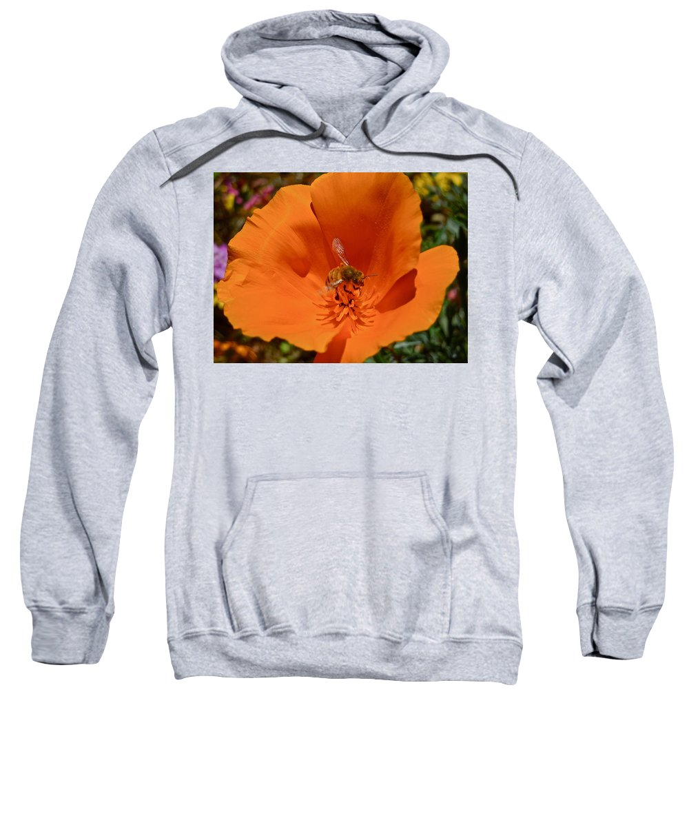 Flowers Sweatshirt featuring the photograph California Poppy by Diana Hatcher
