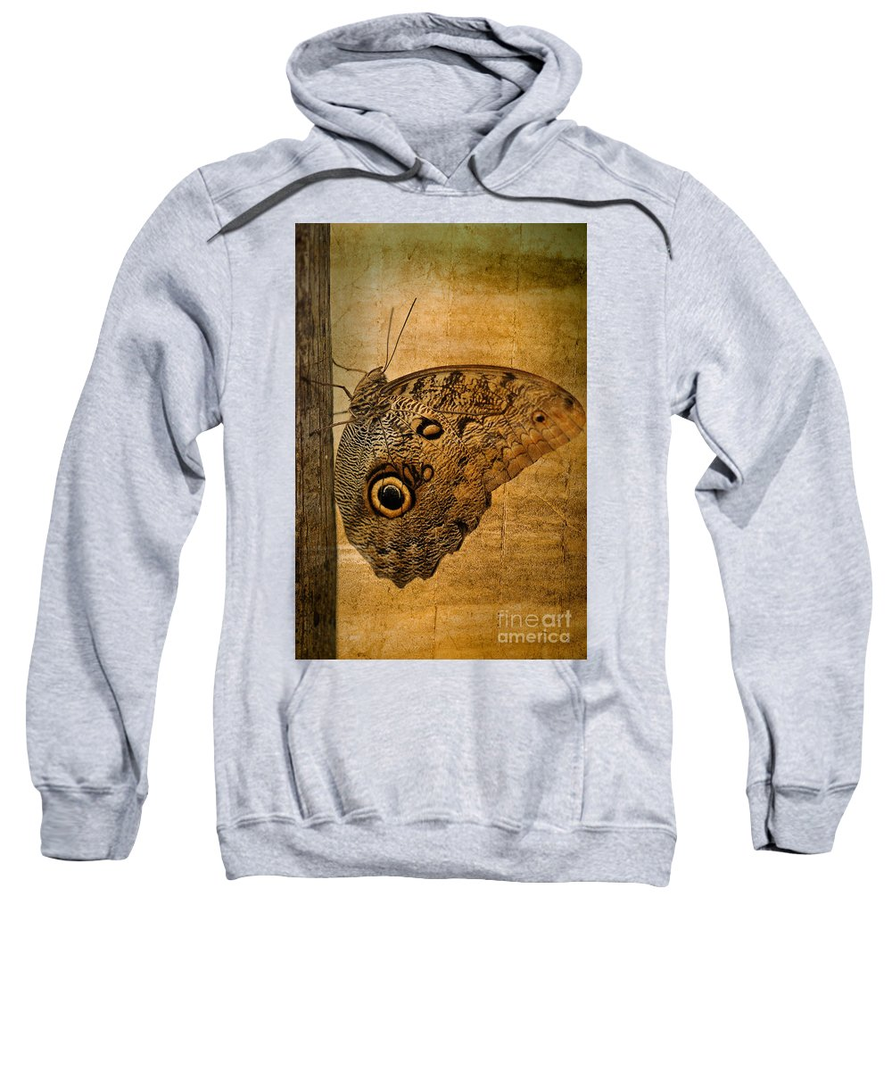 Animals Sweatshirt featuring the photograph Caligo by Charles Dobbs