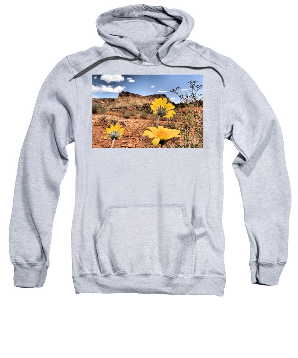 Capitol Reef National Park Sweatshirt featuring the photograph Capitol Flowers by Adam Jewell